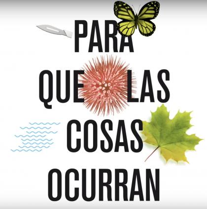 Proyecto secundaria Edelvives 2019 – PQLCO